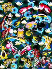 Abdallah - Colorful frogs and bustle