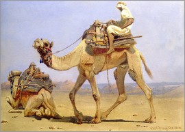 Carl Haag - Camel Preparing to Lie Down, 1858