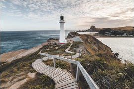 Nicky Price - Castlepoint (Castle Point) Lighthouse, Wellington region, North Island, New Zealand, Pacific