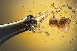 Ktsdesign - Champagne bottle and cork