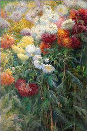 Gustave Caillebotte - Chrysanthemums in Petit Gennevilliers