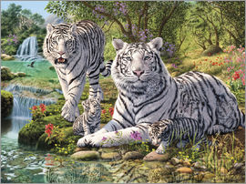 Steve Read - White Tiger Clan
