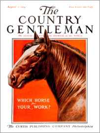 Remsberg - Country Gentleman (horse)