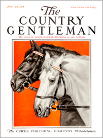 Remsberg - Country Gentleman (horses)