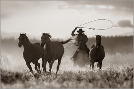 Richard Wear - Cowboy Lassoing Horses