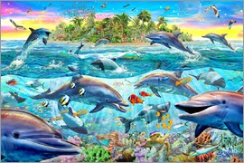 Adrian Chesterman - Dolphin Reef