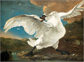Jan Asselijn - The Threatened Swan
