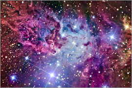 R Jay GaBany - The Fox Fur Nebula