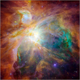 Stocktrek Images - The Orion Nebula