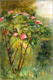 Gustave Caillebotte - The rose bush