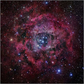 Robert Gendler - The Rosette Nebula