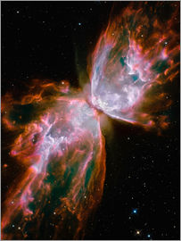 Stocktrek Images - The Butterfly Nebula