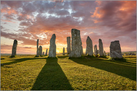 age fotostock - The plants of Callanish