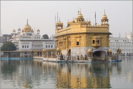Alex Robinson - The Harmandir Sahib