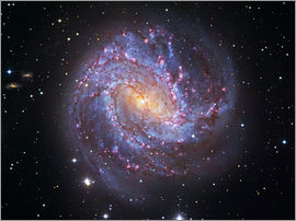 Robert Gendler - The Southern Pinwheel Galaxy
