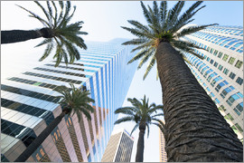 Gavin Hellier - Downtown, Los Angeles, California, United States of America, North America