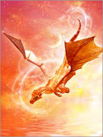 Dolphins DreamDesign - Dragon Flight