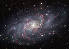 Robert Gendler - The Triangulum Galaxy