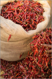 John Alexander - Dried chillies, Sri Lanka, Asia