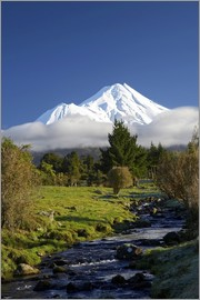 David Wall - A stream and green meadows at Mount Taranaki