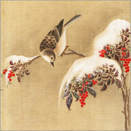 Ohara Koson - A sparrow on a bird berry bush