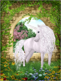 Dolphins DreamDesign - Unicorn - Oasis of Calmness