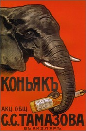 Elephant with bottle