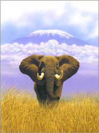 Chris Hiett - Elephant in front of Kilimanjaro