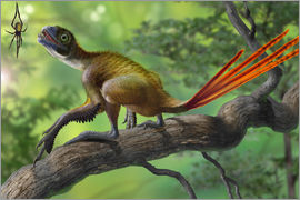 Sergey Krasovskiy - Epidexipteryx perched on a branch ready to eat a nearby spider.