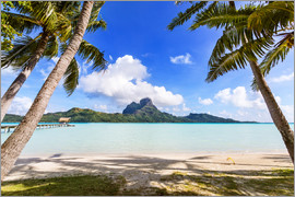 Matteo Colombo - Exotic beach with palm trees, Bora Bora, French Polynesia
