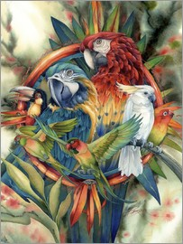 Jody Bergsma - Life's many colours