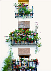 Facade with balconies full of flowers in Valencia