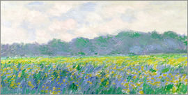 Claude Monet - Field of Yellow Irises in Giverny