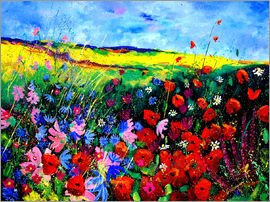 Pol Ledent - field flowers