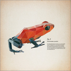 Labelizer - fig5 polygon frog square