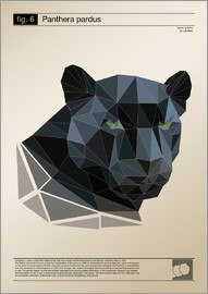 Labelizer - fig6 Polygonpanther Poster