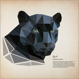 Labelizer - fig6 polygon Panther square