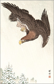 Ohara Koson - Eagle in Flight