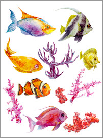 Kidz Collection - Flora and fauna in the sea