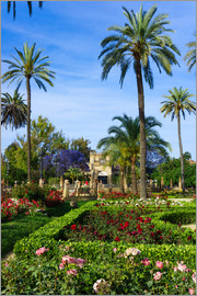 Gardens of the Museum of Seville