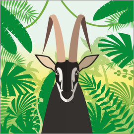 Kidz Collection - Gazelle in the rainforest