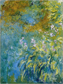 Claude Monet - Yellow Iris