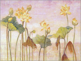 Ailian Price - Yellow lotus