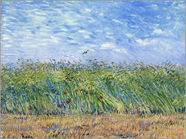 Vincent van Gogh - Corn field with poppies and partridge