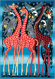 Maulana - Giraffes at night
