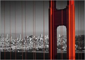Melanie Viola - Golden Gate Bridge in Detail
