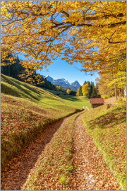 Achim Thomae - Golden autumn in Bavaria
