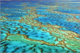 I. Schulz - Great Barrier Reef, Australia