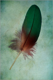 Jaroslaw Blaminsky - Green feather