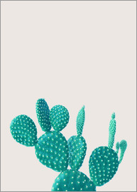 Finlay and Noa - Green Cactus
